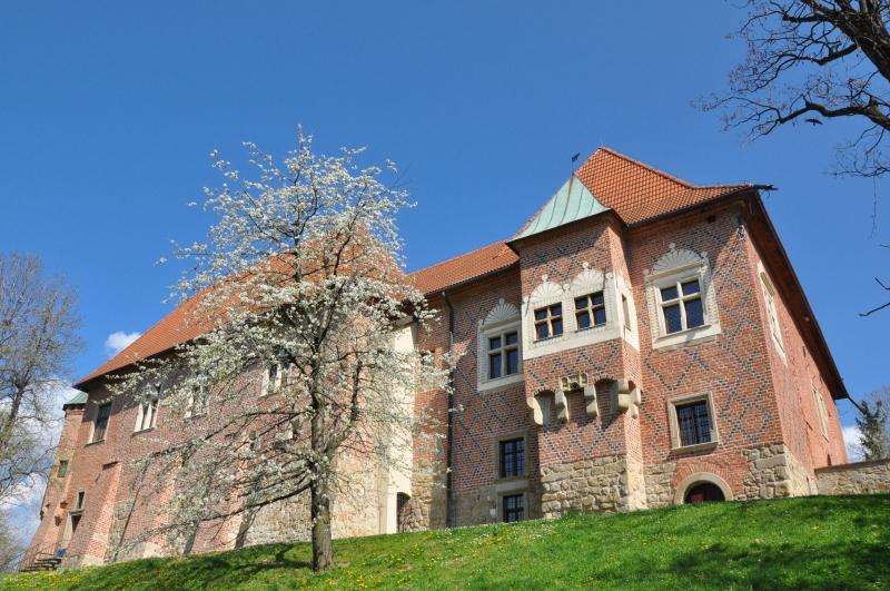 Zamek w Dębnie. Fot. Przemysław Skowron